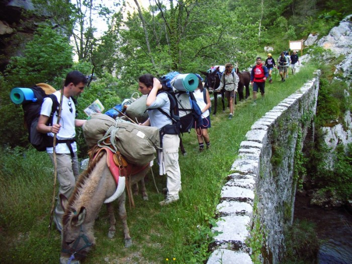 Randonner avec des ânes sur le sentier cathare