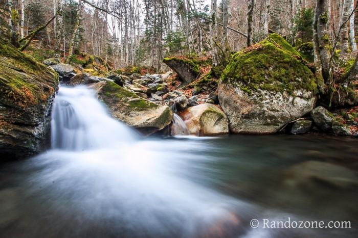 Promenade le long de la rivière dans le bois de Bué