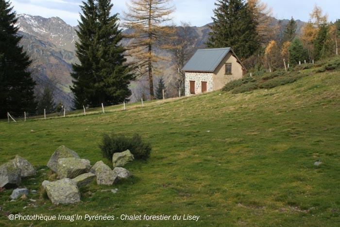 Chalet forestier du Lisey