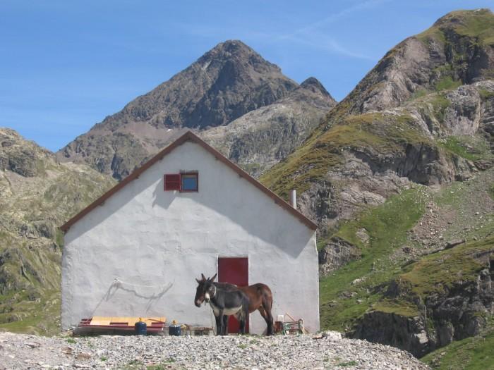 Petite cabane près du lac