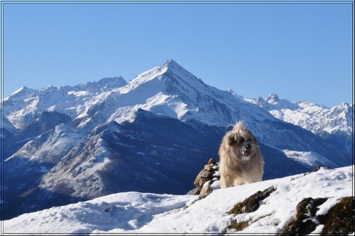 Le pic du Midi d'Arrens