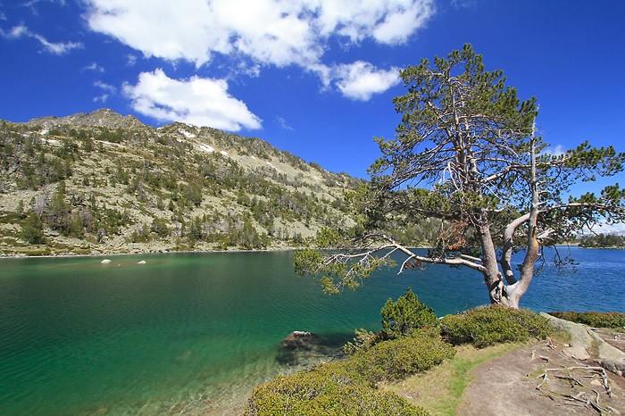 Randonnée pédestre : Lacs du Néouvielle (Aumart et Aubert)