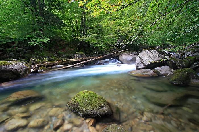 Rivière au dessus de Cauterets