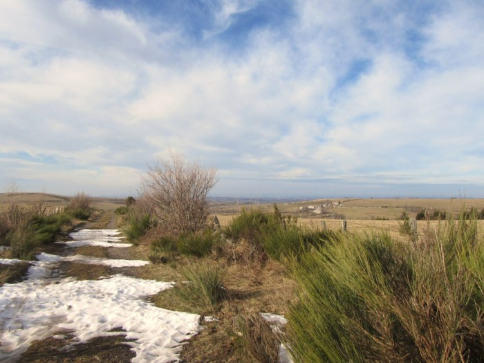 Randonnée Plateau de l'Aubrac