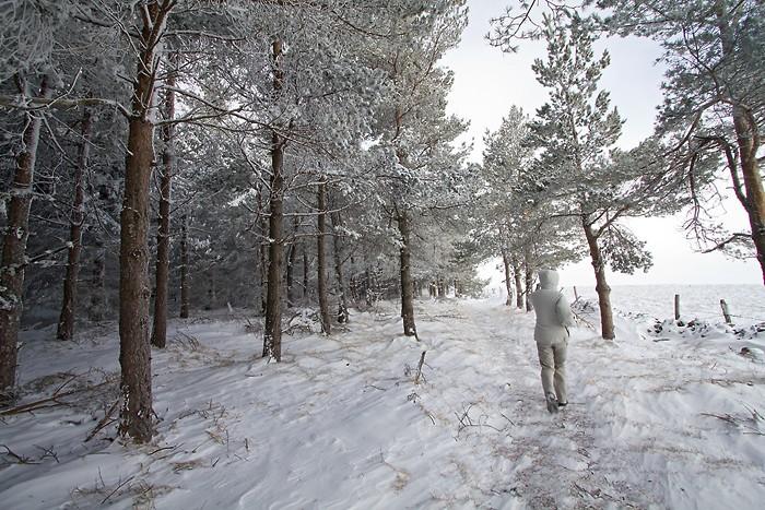 Randonnée pédestre sur le plateau de l'Aubrac