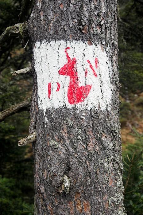 Marquage du Parc National des Pyrénées
