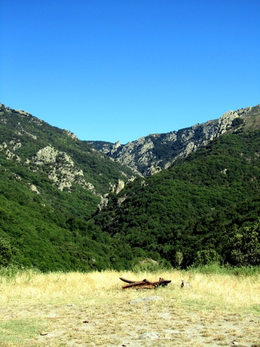Randonnée Sommet du Caroux dans l'Hérault