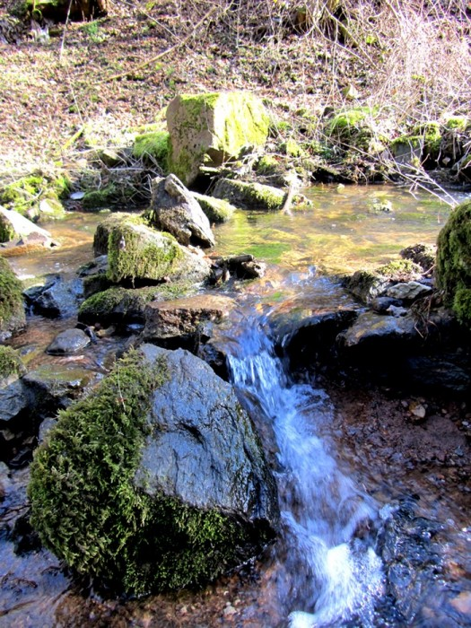 Balade au Domaine de Combelles, près de Rodez