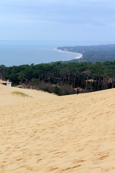 Randonnée à la dune du Pyla