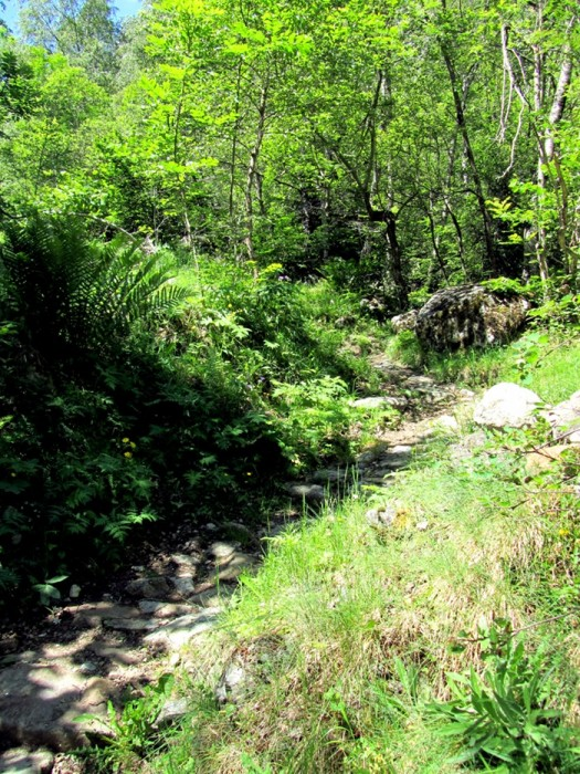 Montée lors de la randonnée au Lac du Lauvitel, Massif des Ecrins