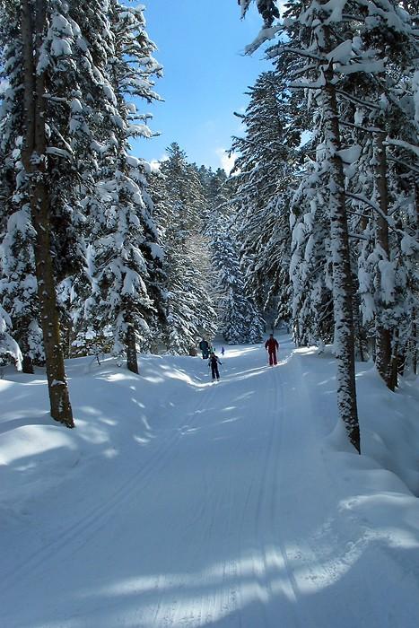 Domaine de ski de fond de Payolle dans les Hautes Pyrénées