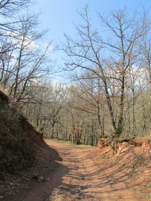 Randonnée Aveyron à Ampiac
