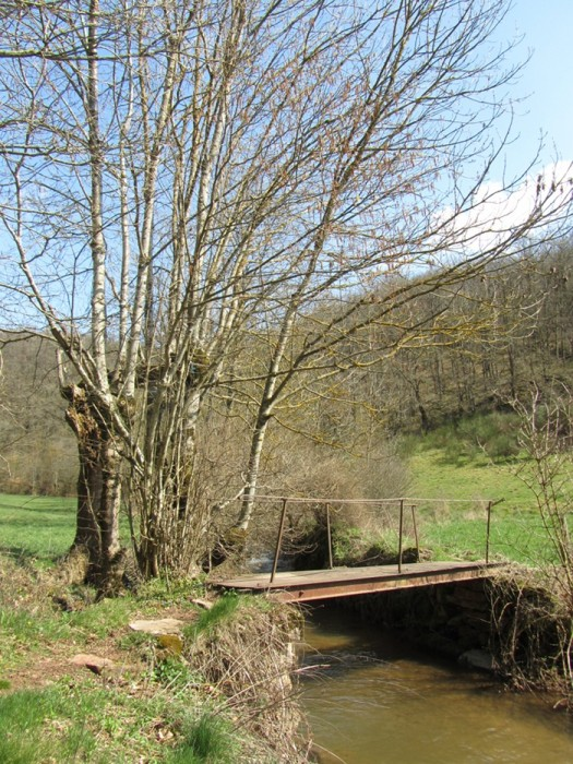 Passerelle lors de la randonnée à Agnac Ampiac