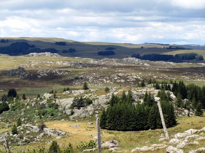 Randonnée Aubrac en Lozère