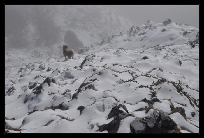 Le soum d'Andorre