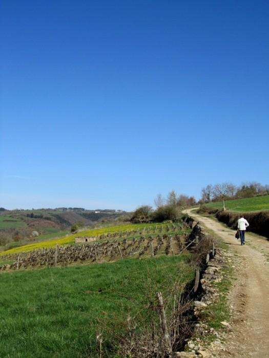 Randonnée autour d'Estaing et de Saint Geniez des Ers, en Aveyron