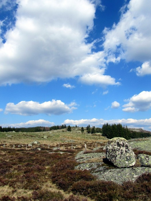 Randonnée en Lozère sur l'Aubrac
