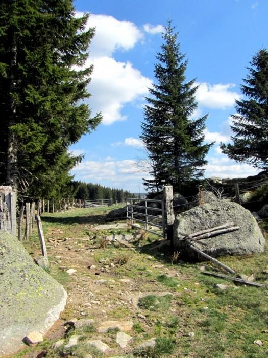 Plateau de l'Aubrac côté Lozère