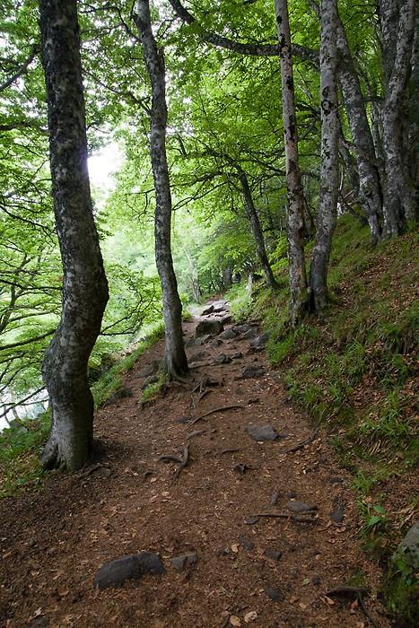 Le sentier qui fait le tour du lac Pavin dans le Massif Central