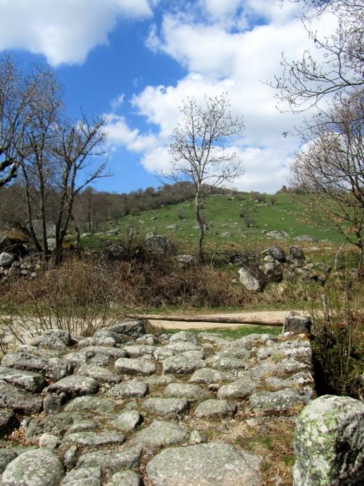 Randonnée au départ du Col de Bonnecombe sur Aubrac