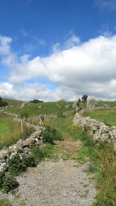 Chemin sur l'Aubrac, menant à la cascade du Déroc