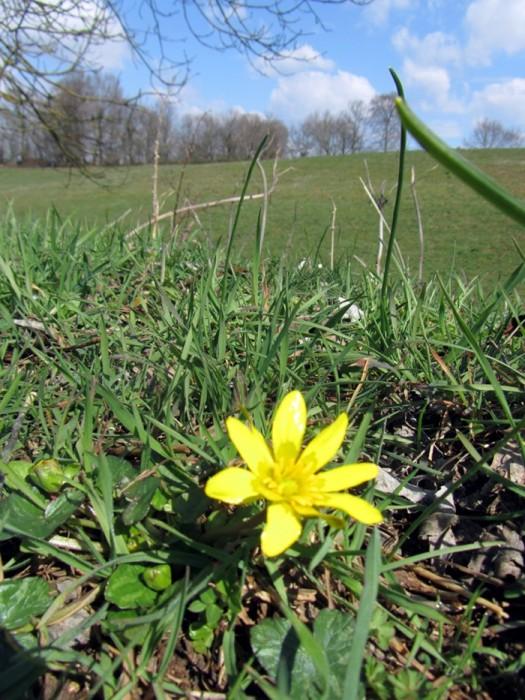 Randonn�e p�destre : Aveyron : Randonn�es familiales en Carladez