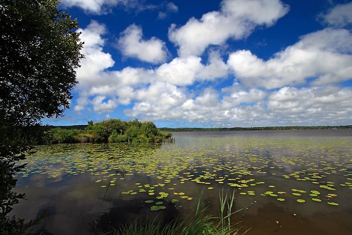 Balade à l'étang de Léon