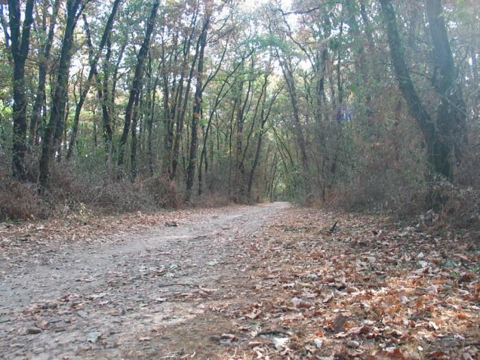 Randonnée nue, randonue en montagne et sur les sentiers