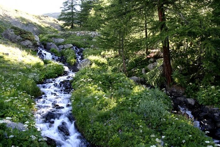 Ruisseau en montant au lac Laramont