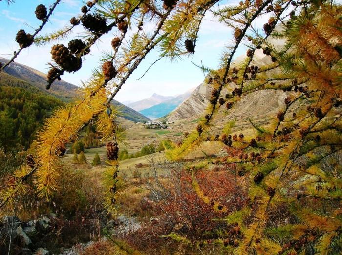 Vallée de Crévoux, La Chalp