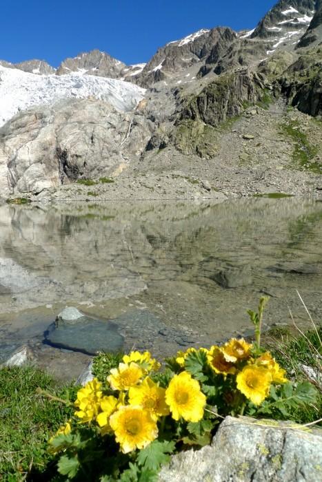 Glacier Blanc et lac Tucket dans les Alpes