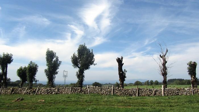 L'Aubrac près d'Alpuech