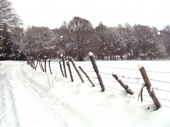 Neige près de Laguiole sur l'Aubrac