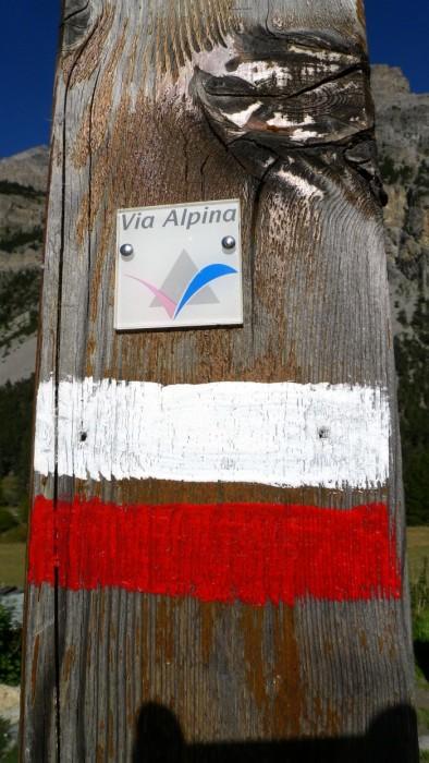 GR sur la Via Alpina dans la Vallée Etroite