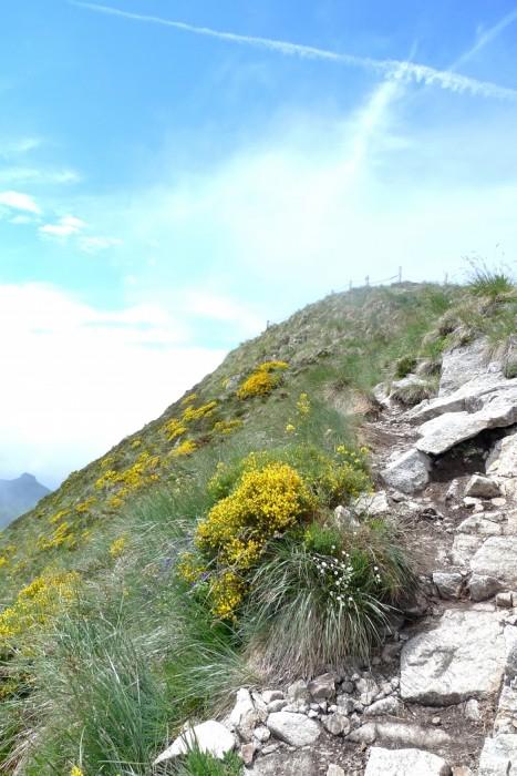 Le Puy Mary se dégage lorsque nous redescendons de l'autre côté
