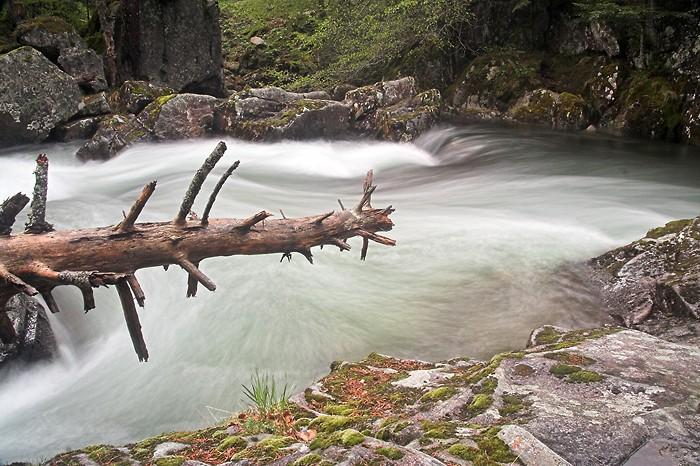 Chemin des cascades entre la Raillère et le pont d'Espagne