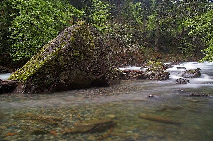 Gave de Cambalès sur le sentier des Cascades