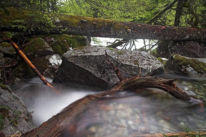 Le bois, la pierre et l'eau