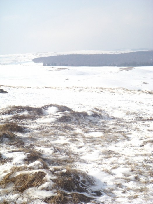 Paysage enneigé d'Aubrac et de ses prairies