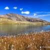 Lac de Palluel