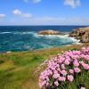 De belles couleurs sur le GR 34 en Bretagne