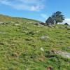 Buron près du Puy de Gudette