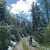 Près de Barèges dans la forêt