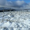 La neige est arrivée sur l'Aubrac ce matin