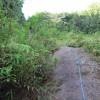 La corde pour s'aider à grimper