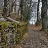 On longe un muret de pierres sèches