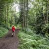 Large chemin sur la randonnée des sources de la Dordogne