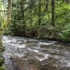 Cours d'eau des sources de la Dordogne