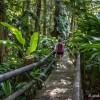 Visiter le Parc Zoologique des Mamelles