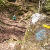 On continue à suivre le sentier balisé en jaune